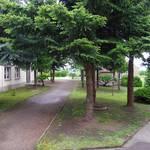 Hort Rehmsdorf