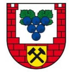 Burgenlandkreis erlässt Allgemeinverfügung